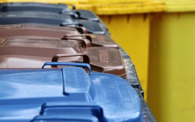 Müll vermeiden und richtig trennen in der Gastronomie